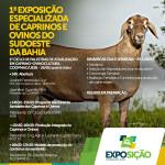 Exposição caprinos e ovinos